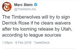 Rose Stein